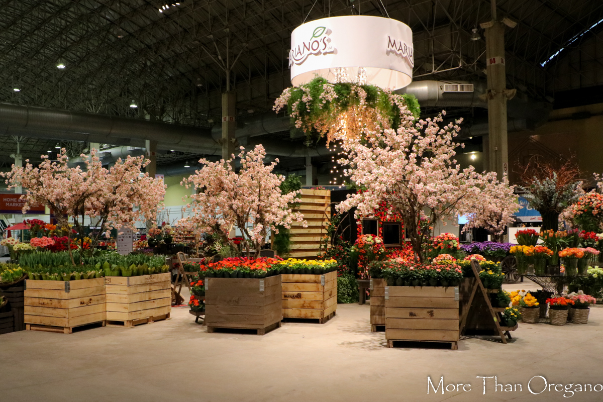 Chicago Is… Flowers & More 2016